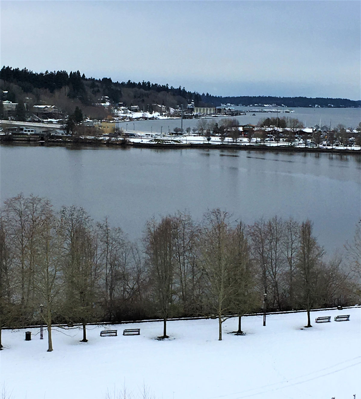View of Capitol Lake from Capitol Campus following recent snow.